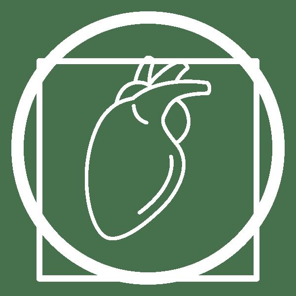 icona-cardiologia