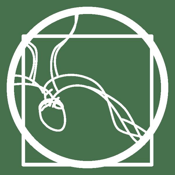 icona-chirurgia-vascolare